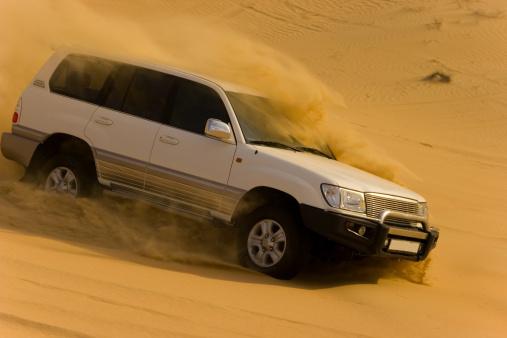 Driving「Desert safari」:スマホ壁紙(14)