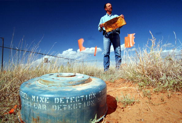 Sandia Mountains「Bee land mine detection experiment」:写真・画像(8)[壁紙.com]