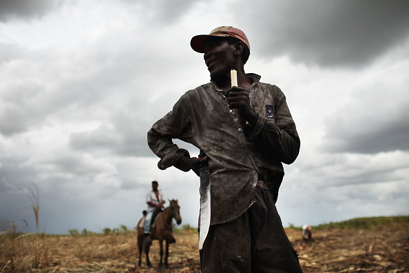 Manual Worker「Haitians Live Precarious Existence on DR Agricultural Plantations」:写真・画像(9)[壁紙.com]