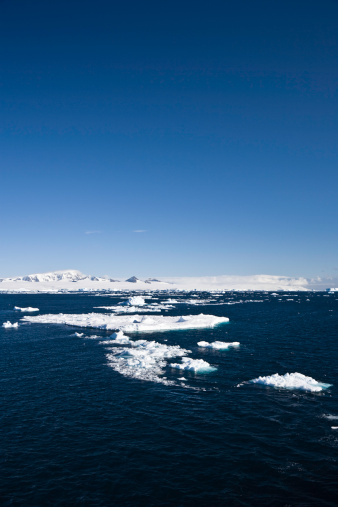 流氷「南極冷たい海の眺め」:スマホ壁紙(2)