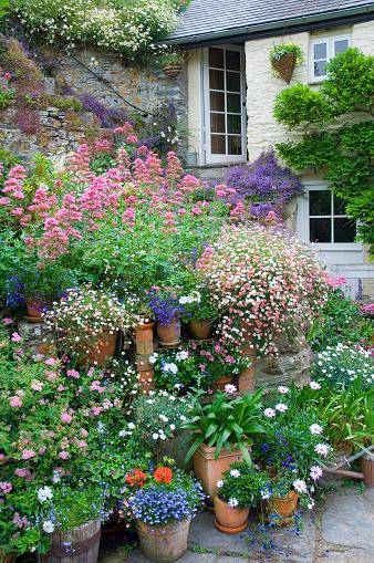 Container「Tiered Summer planters in sunken courtyard garden, June」:スマホ壁紙(11)