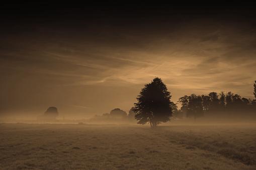 Iran「Fog Covering Frosted Landscape」:スマホ壁紙(9)