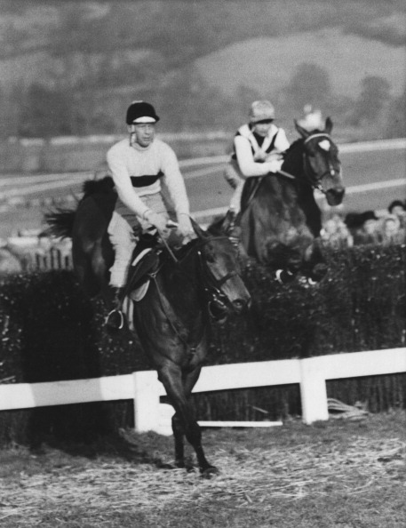 Willy Robinson「Pat Taaffe And Arkle」:写真・画像(0)[壁紙.com]