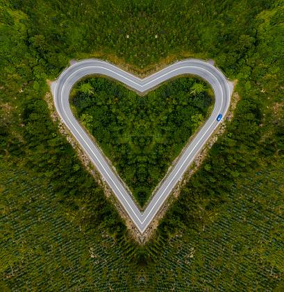 Road Marking「Heart-shaped road」:スマホ壁紙(19)