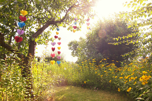Tree「Heart-shaped garland made of paper hanging in garden」:スマホ壁紙(15)
