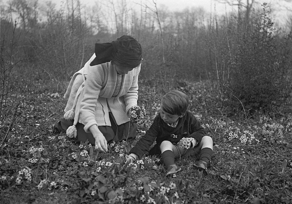 Bouquet「Mother And Son Picking Flowers」:写真・画像(10)[壁紙.com]