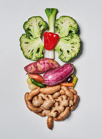 Ginger - Spice「Food resembling the human digestive system.」:スマホ壁紙(19)