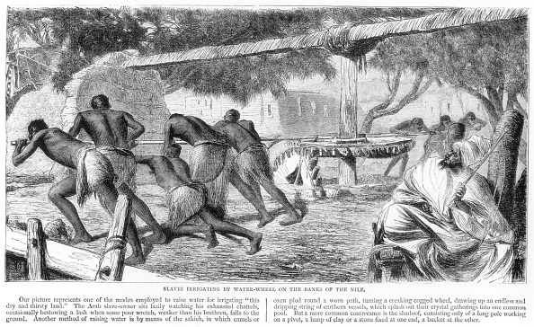 Agricultural Building「Slaves Irrigating By Water-Wheel On The Banks Of The Nile' 19th Century」:写真・画像(13)[壁紙.com]