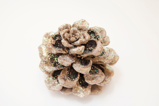 Pine Cone「Fir cone, close-up」:スマホ壁紙(6)