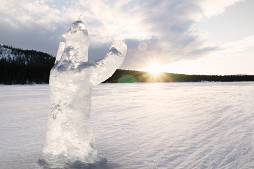 Ice Sculpture「Carved ice bear melts in strong morning sunlight」:スマホ壁紙(18)