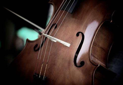 Violin「Viola」:スマホ壁紙(4)