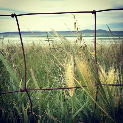 Auto Post Production Filter「Looking through wire fence towards the ocean」:スマホ壁紙(11)
