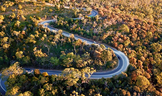 Hairpin Curve「Winding forest road」:スマホ壁紙(5)