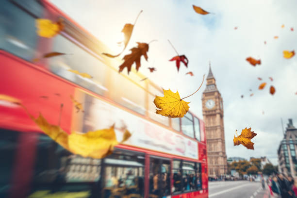 Falling Autumn Leaves In London:スマホ壁紙(壁紙.com)