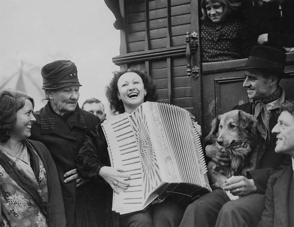 Accordion - Instrument「Gypsy Nina」:写真・画像(9)[壁紙.com]