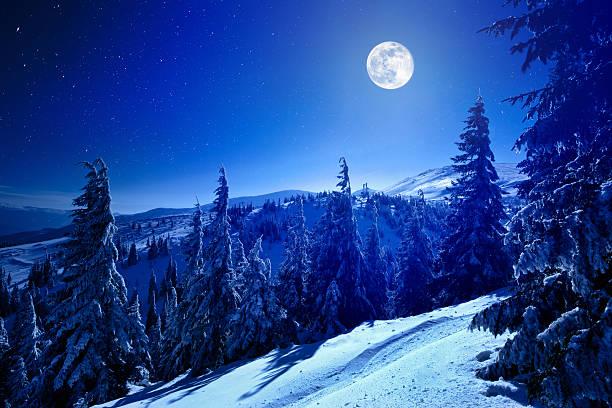 Winter moon:スマホ壁紙(壁紙.com)