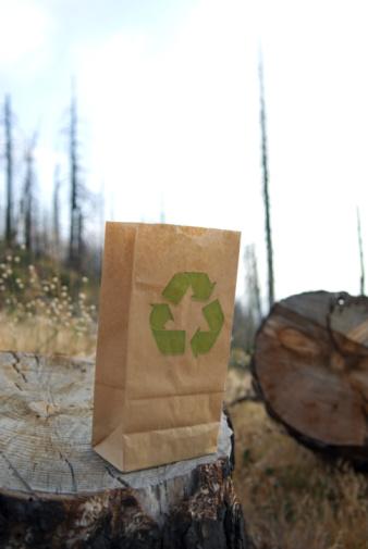 Deforestation「Recycle symbol printed on brown paper bag.」:スマホ壁紙(19)