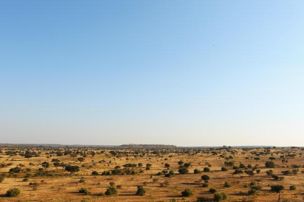 Botswana「An African Safari」:写真・画像(8)[壁紙.com]