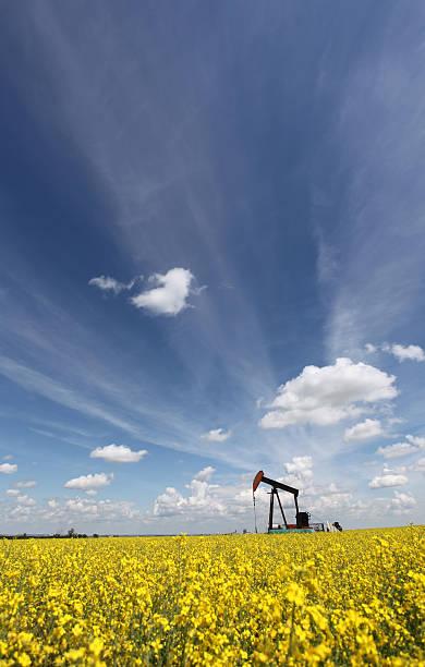 Oil Industry in Alberta with Pumpjack:スマホ壁紙(壁紙.com)