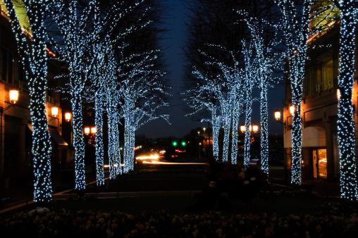 Christmas Lights「Street with Christmas decorations」:スマホ壁紙(7)