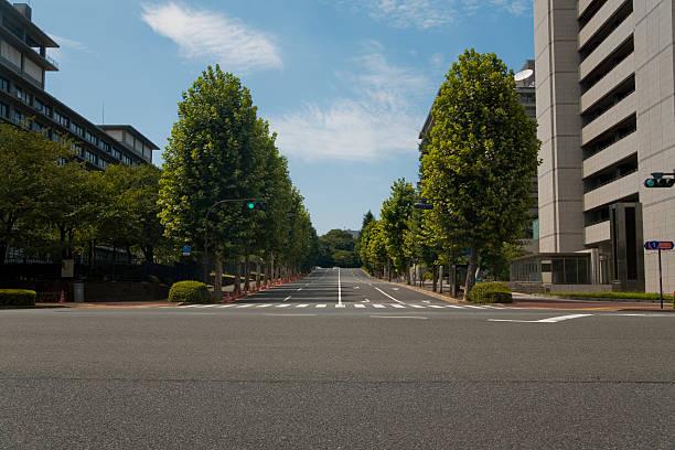 Street with trees:スマホ壁紙(壁紙.com)