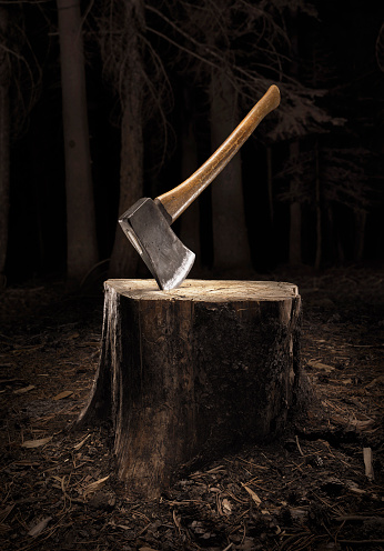 Tree Stump「Axe buried into stump in the dark」:スマホ壁紙(13)