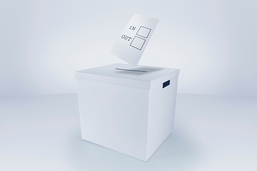 Voting Ballot「Voting in / out at the Ballot Box」:スマホ壁紙(16)