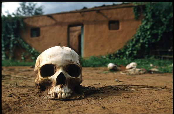 Grass Family「Martyred Rwanda Counts Its Victims」:写真・画像(10)[壁紙.com]