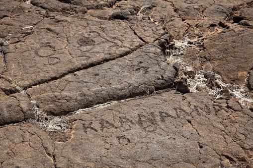 The Nature Conservancy「Petroglyphs on Kings Walking Trail」:スマホ壁紙(11)