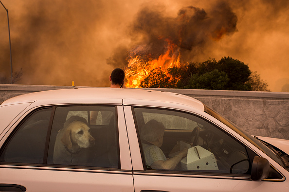 California「La Tuna Canyon Fire Prompts Evacuations in Burbank」:写真・画像(17)[壁紙.com]