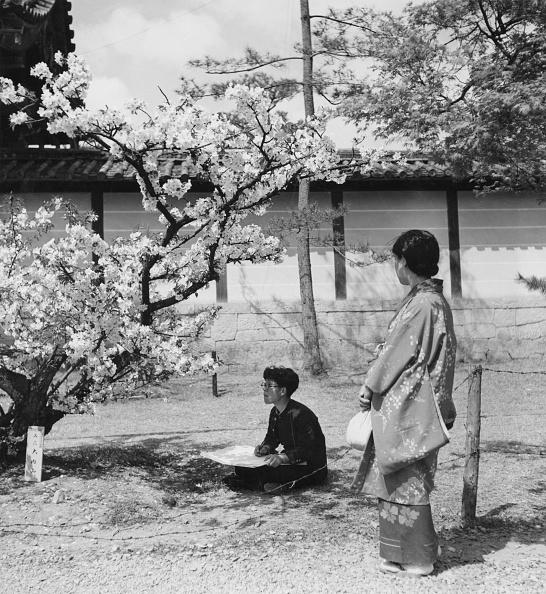 日本「Cherry Blossom Sketching」:写真・画像(8)[壁紙.com]