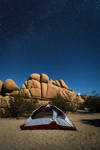 star sky「Camping At Jumbo Rocks In Joshua Tree National Park」:スマホ壁紙(17)