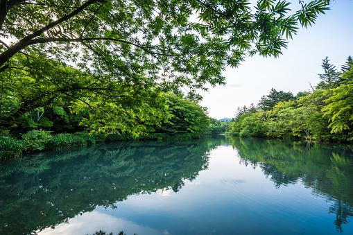 秋「軽井沢の桑部池」:スマホ壁紙(7)