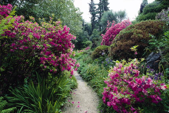 Footpath「Walkway in the garden of Andre Heller in Gardone.」:写真・画像(2)[壁紙.com]