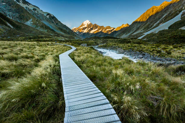 Mountain trail towards Mount Cook, Canterbury, New Zealand:スマホ壁紙(壁紙.com)