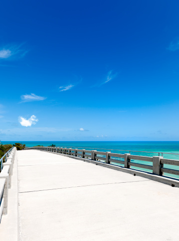 Gulf Coast States「empty elevated road near tropical beach Florida USA」:スマホ壁紙(12)