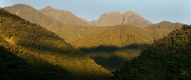Montane Rainforest「Sunrise on Apu Kanaqhuai, Manu National Park, Peru」:スマホ壁紙(10)