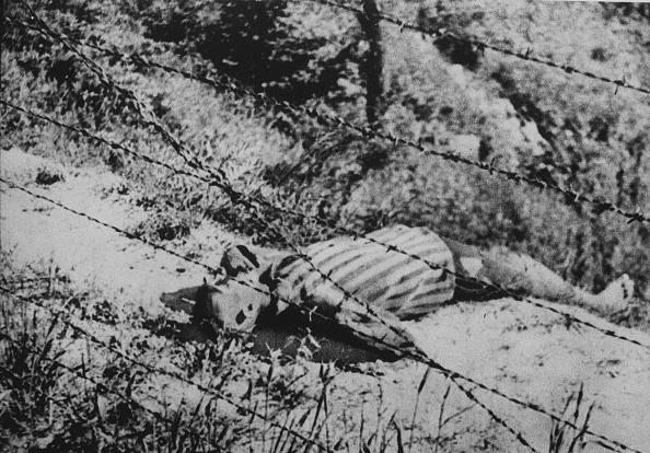 Fototeca Storica Nazionale「Suicide In A Concentration Camp」:写真・画像(5)[壁紙.com]
