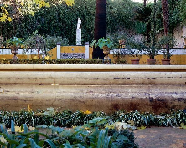 Casa De Pilatos「Garden with statue and trees」:写真・画像(14)[壁紙.com]