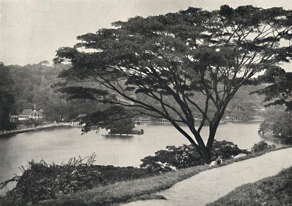Sri Lanka「Se」:写真・画像(6)[壁紙.com]
