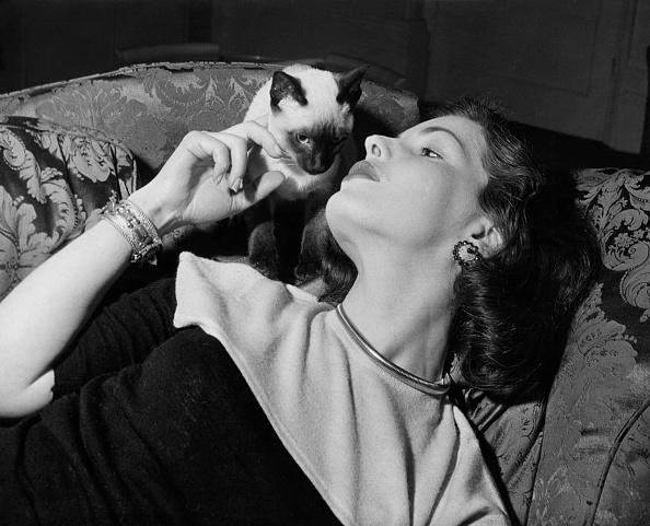 Purebred Cat「Elizabeth Sellars」:写真・画像(2)[壁紙.com]