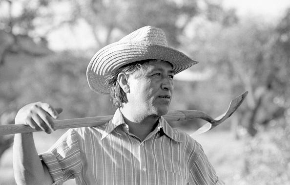Shovel「Cesar Chavez In Community Garden」:写真・画像(4)[壁紙.com]