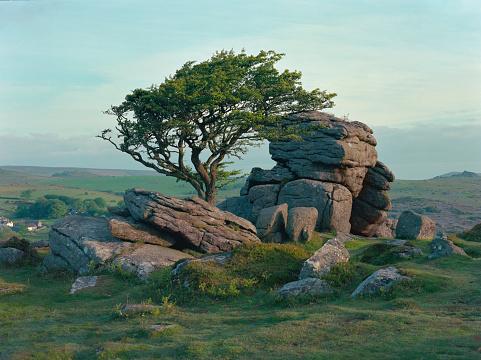 Hawthorn「Saddle Tor at dawn, Dartmoor, Devon」:スマホ壁紙(19)