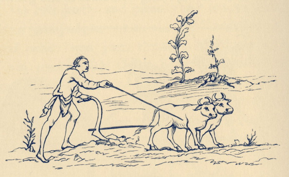 Ox Cart「11th century agriculture in England: Plouging」:写真・画像(2)[壁紙.com]