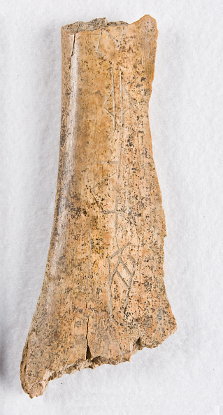 "White Background「Inscribed Bone Fragment (""Oracle Bone"")」:写真・画像(15)[壁紙.com]"