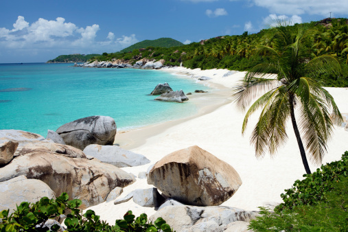 Frond「beach with boulders and palm trees in Virgin Gorda, BVI」:スマホ壁紙(11)