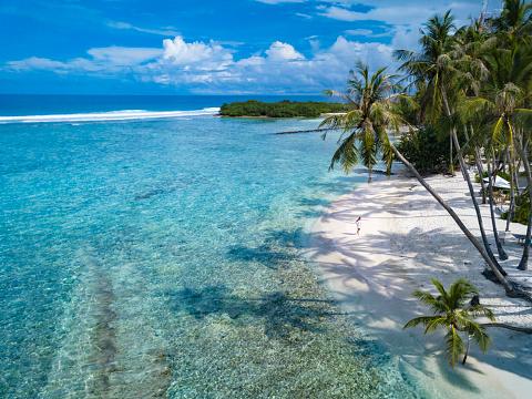 島「Beach with palm trees, Thulusdhoo, Male, Maldives」:スマホ壁紙(18)