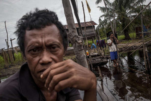 Fisherman「Indonesia's Deforestation Rate Becomes Highest In The World」:写真・画像(10)[壁紙.com]
