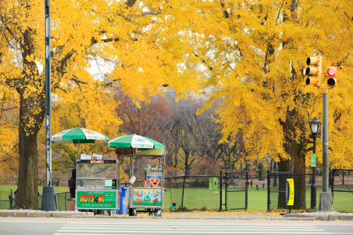 Public Park「Hot dog stand under the autumn color ltrees.」:スマホ壁紙(8)