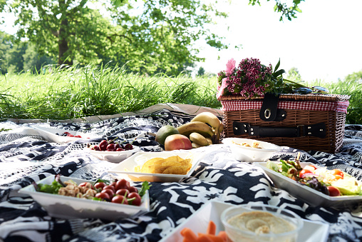 Picnic Blanket「Healthy picnic in a park in summer」:スマホ壁紙(7)